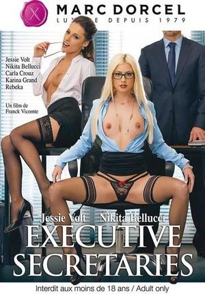 Секретарши дорселя порно — photo 13
