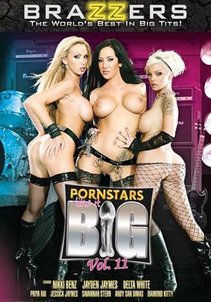 Порнозвезды любят большие члены 17 онлайн